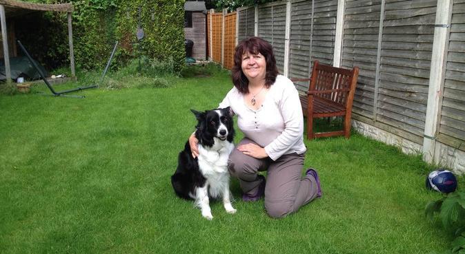 Weekend animal care and evening walks, dog sitter in Birmingham