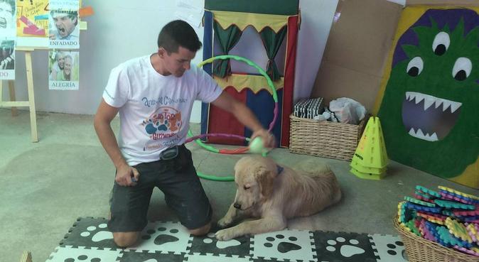 Perros sanos, tranquilos y felices, canguro en Almería