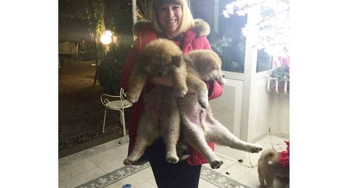 Tante cure e coccole per i nostri piccoli amici, dog sitter a Pisa