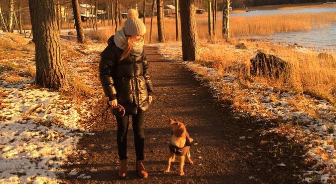 Aktiva naturpromenader på Lidingö, hundvakt nära Stockholm