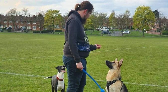 Fuss and fun with graduate level care., dog sitter in Lincoln