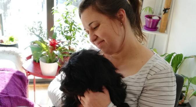 Me encantaría cuidar tu perro si no puedes, canguro en Pamplona