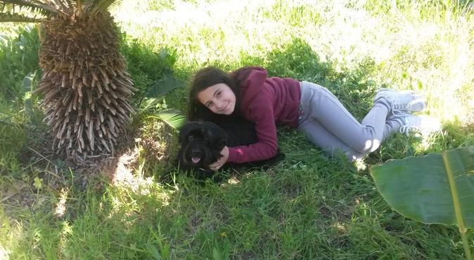 Una famiglia in + per dargli l'affetto che dai tu!, dog sitter a palermo