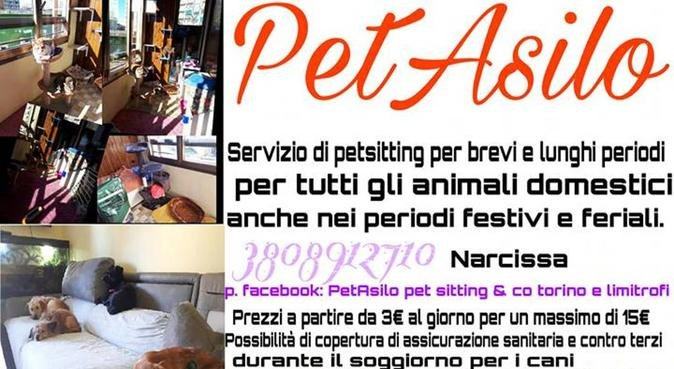PetSitter CINOFILO con ESPERIENZA PLURIENNALE, dog sitter a Torino