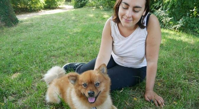 🐕 Ma mission : chouchouter vos chiens ! 🐶, dog sitter à Rennes, France