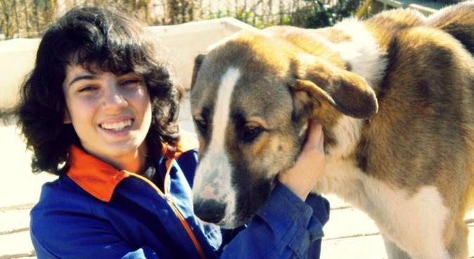 ¡Haré que tu perro también esté de vacaciones!, canguro en Gandía