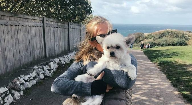 Kärleksfull hundpassning av student i Lund!, hundvakt nära Lund