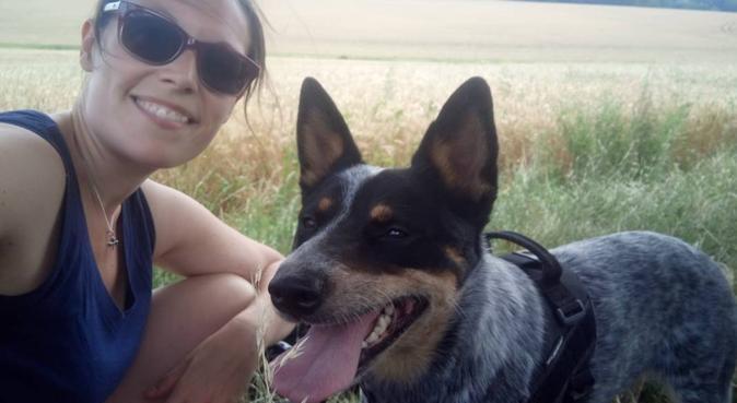 Au petit bonheur, dog sitter à Azay-sur-Cher