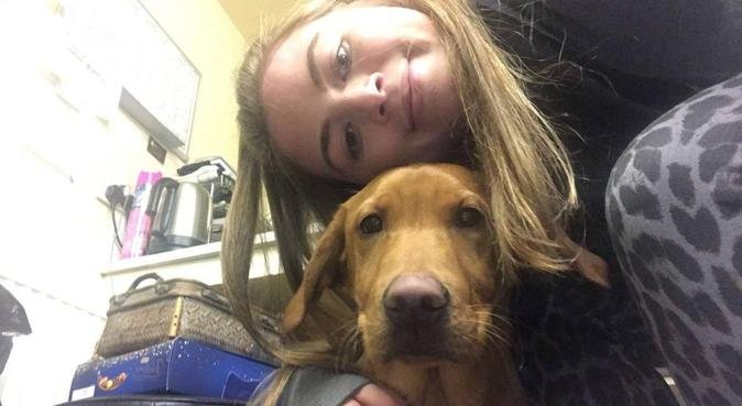 Friendly and Fun Walker, dog sitter in Loughborough, UK