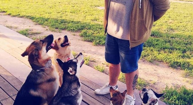 Amante de los perros, canguro en Figueras
