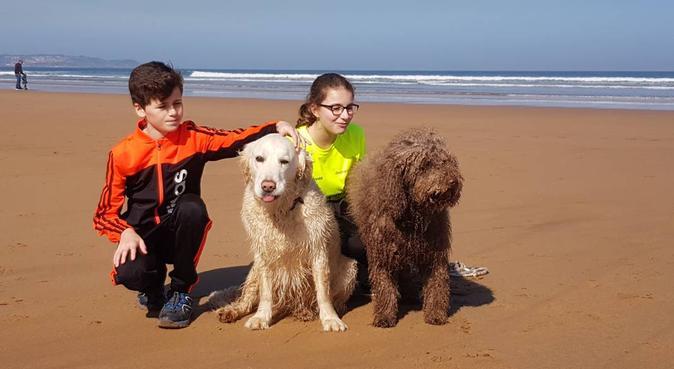 La tranquilidad de dejar a tu perro con un amigo., canguro en Carreño