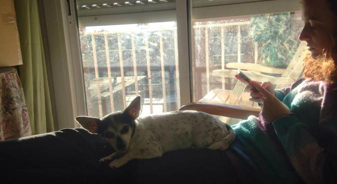 Piso con mucho solete, perfecto para perretes!, canguro en Viladecans