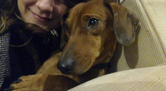 Passeggiate e amorevoli attenzioni :), dog sitter a Bologna