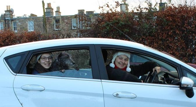 24/7 Fun and love included!, dog sitter in Edinburgh