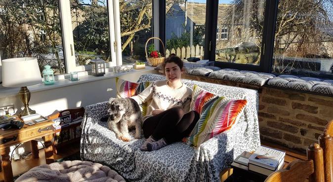 Heaven4dogs, dog sitter in Bingley
