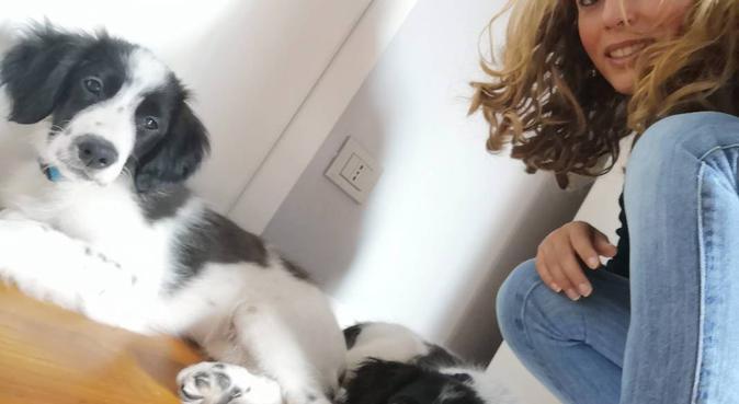 Coccole, giochi e tante passeggiate, dog sitter a Roma