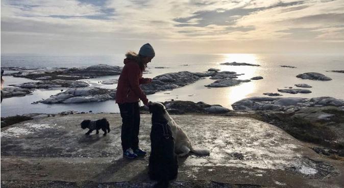 Hundeelsker på jakt etter turkamerat, hundepassere i Hommersåk
