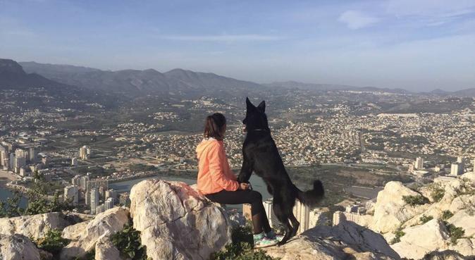 Me encantan los animales, canguro en Valencia