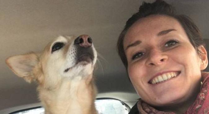 l'amore non ha razza ne taglia. Dog Lover!, dog sitter a MILANO