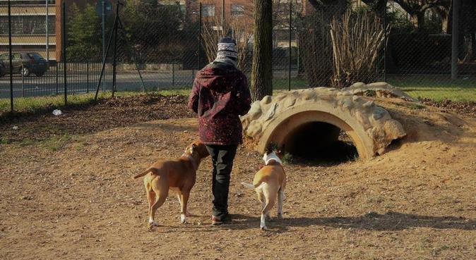 Laureata in Comportamento Animale, canguro en Torino