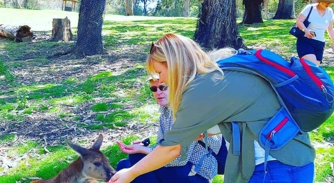Kärlek till djur och natur, hundvakt nära Örebro, Sverige
