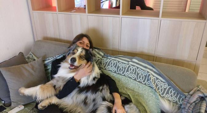 Là où il fait bon vivre au milieu des palmiers, dog sitter à Cannes la bocca