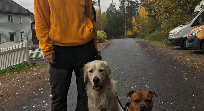 Lange turer i skog og mark, hundepassere i Oslo