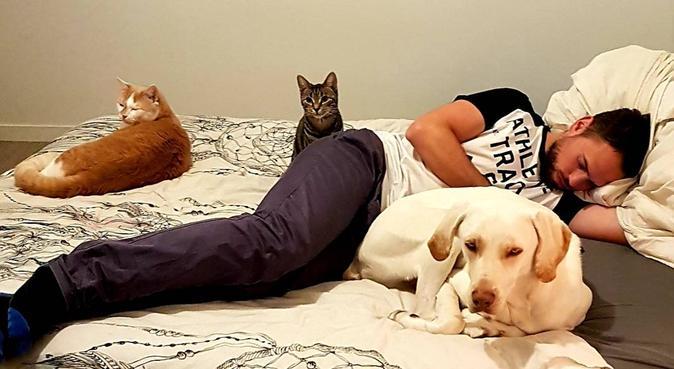 L'amour des bêtes, dog sitter à Tours