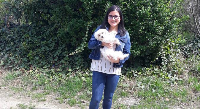 Tante passeggiate per i vostri piccoli amici, dog sitter a Brugherio, MB, Italia