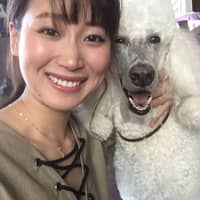 Mayu's dog boarding