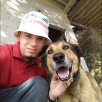 Alojamiento de perros de Martín