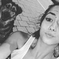 Alojamiento de perros de Tania