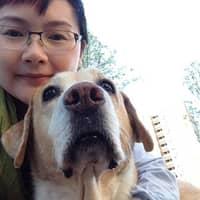 Kathia's dog day care