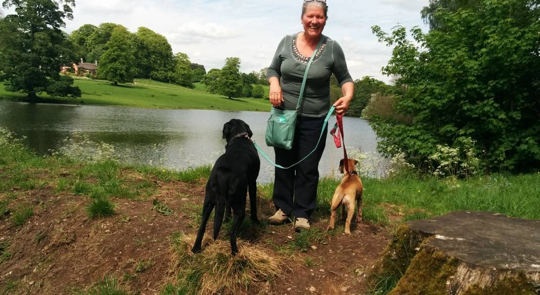 Dedicated to doing doggie demands, dog sitter in Shipley