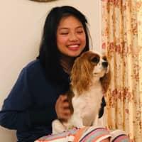 Serena & Zhiwei's dog boarding