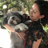 Miri's dog day care