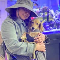 Julie & Maria's dog day care