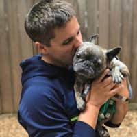 Joseph's dog day care
