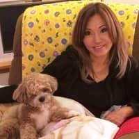 Roxy's dog day care
