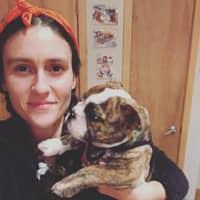 Morgan's dog day care