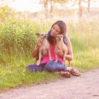 Meghana's dog day care
