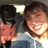 dog walker Aryana