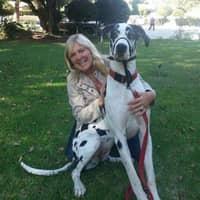 Valerie H.'s profile image