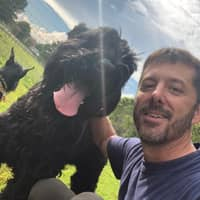 Richard's dog day care