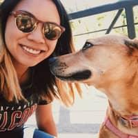 Caroline's dog boarding