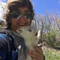 Caden's dog day care