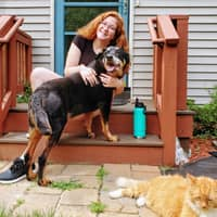 pet sitter Ainsley