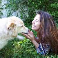 Larissa's dog day care