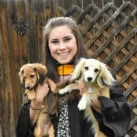 Kendall's dog day care