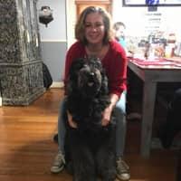 Kristie's dog boarding